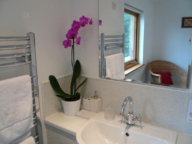 bathroomdetail1